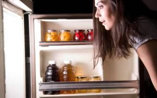 Можно ли отключать холодильник на длительный срок?